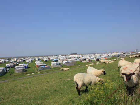 Lageplan Campingplatz & Strand