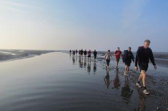 Wattführung mit Nationalpark Wattführer Gerke Enno Ennen zur Vogelschutzinsel Minsener Oog