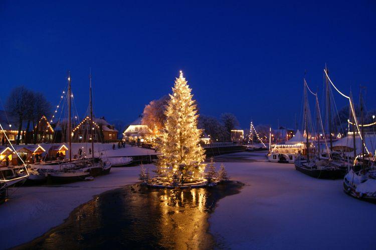 Aufstellen des schwimmenden Weihnachtsbaumes